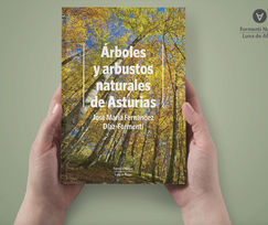 c243x204_v1_libro