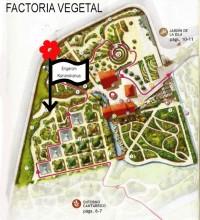 Erigeron-Karvinskianus Mapa(2)