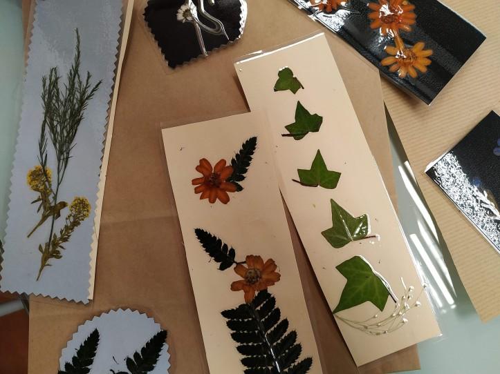 008-taller-de-flores-prensadas