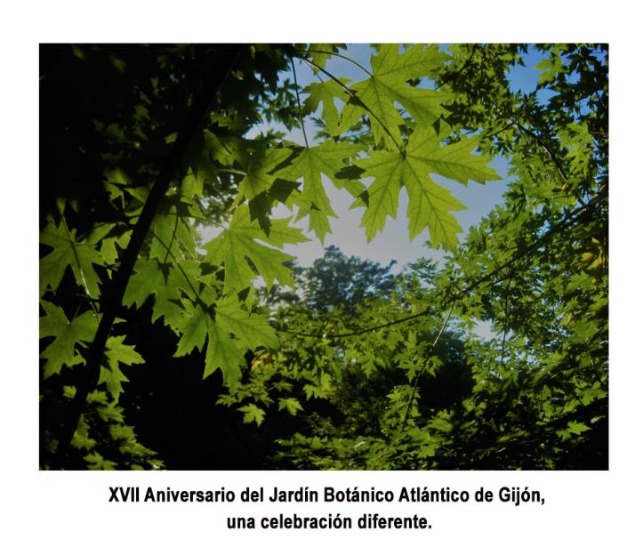 XVII-Aniversario-del-Jardin-Botanico
